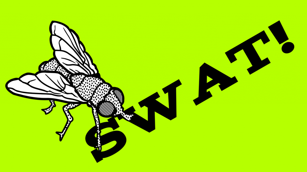 swat an insect